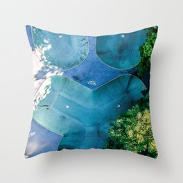 Skatepark - Aerial Photography Throw Pillow
