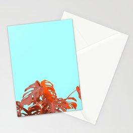 M.C Stationery Cards
