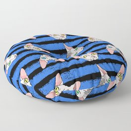 sphynx cats on blue and black Floor Pillow