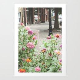Flowers on a historic street Art Print