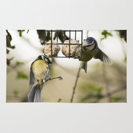 Two Blue Tits Hanging around for food #Bird #Feeder #Tit Rug