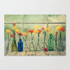 Ranunculus, Bottles and Window Still Life Canvas Print