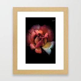 Rose fatiguée colors fashion Jacob's Paris Framed Art Print