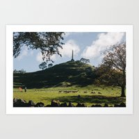 one tree hill Art Prints featuring One Tree Hill in Auckland by Diana Eastman