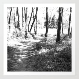 Suburban nature Art Print