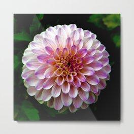 Floral (Color) Metal Print