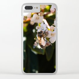 Bee in Late Winter (2 of 2) Clear iPhone Case