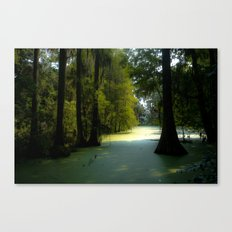 Swamp land Canvas Print