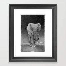 African Elephant Framed Art Print