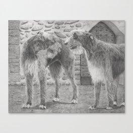 Irish wolfhounds - Gentle giants Canvas Print