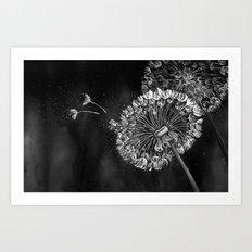 Dandelions, black & white Art Print