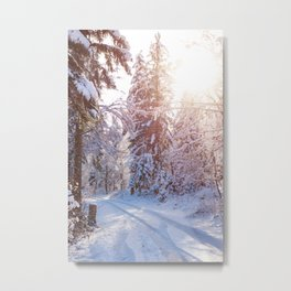 Snow covered road in the winter forest. Metal Print