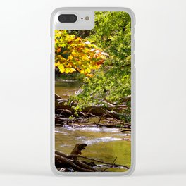 Fall Colors Clear iPhone Case