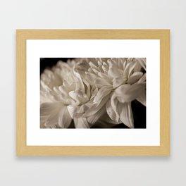 Delicate White Framed Art Print