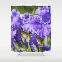Purple Bearded Irises Shower Curtain