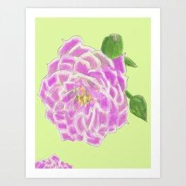 Rose dahlie flower big Art Print