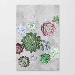 Simple succulents Canvas Print