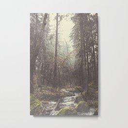 The paths we wander II Metal Print