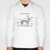 greyhound Hoodies featuring Greyhound Anatomy by gemma correll