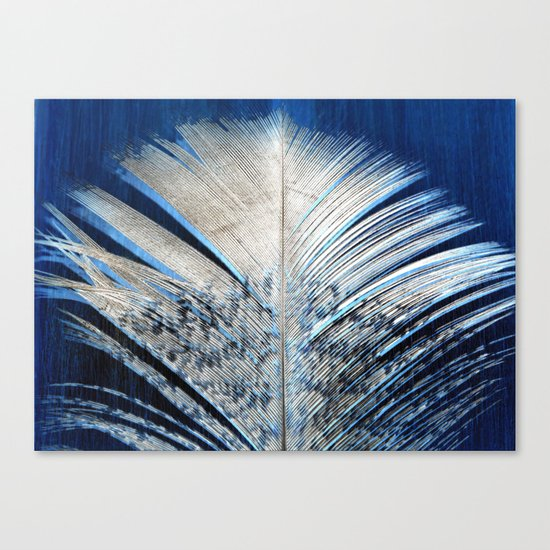 Feather   Feathers   Spiritual   White and Blue Feather   Nature Canvas Print
