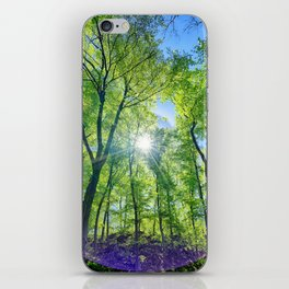 Perfect lens flare in a summer afternoon in the forest iPhone Skin