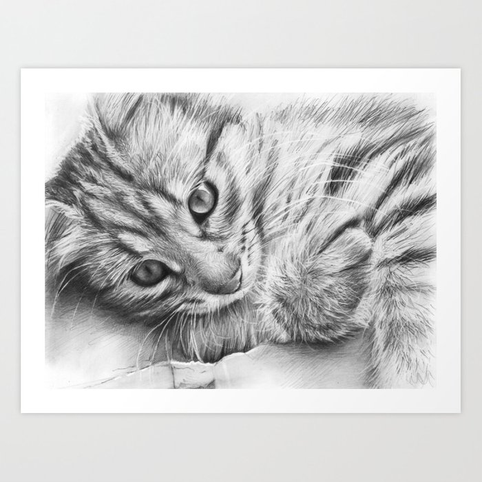 Cat Kitten Dawing Art Print