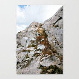 Desolation Mountainside Canvas Print