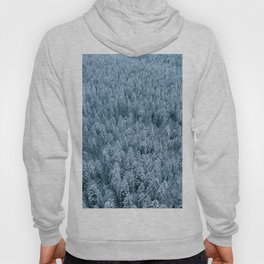 Winter pine forest aerial - Landscape Photography Hoody