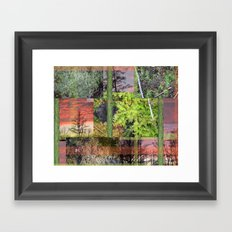 Trees & Moss Framed Art Print