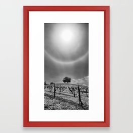 Vines and Branches Framed Art Print