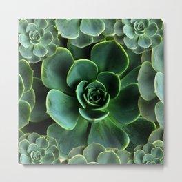 JADE GREEN SUCCULENT ROSETTES DESIGN Metal Print