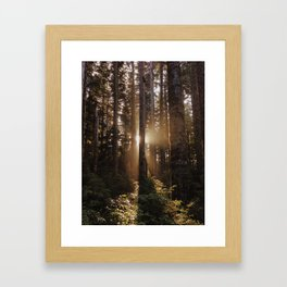 Larch Mountain Sunset Framed Art Print