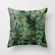 Spring Dew Drops Throw Pillow