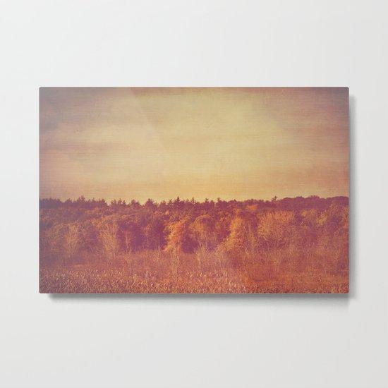 Wide Open Spaces Metal Print