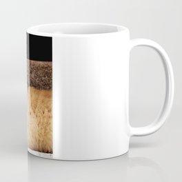 You Can Take My Picture Coffee Mug