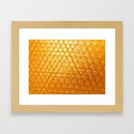 Honeycomb Morning Framed Art Print