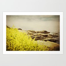 Sea Swept Art Print