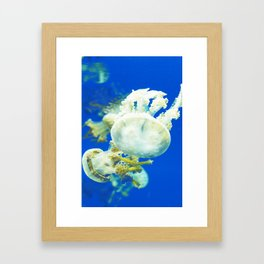 Blue Jellyfish Under the Sea Underwater Photography Saturated Pop Art Color Wall Art Framed Art Print