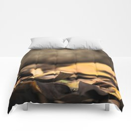 Autumn 01 Comforters
