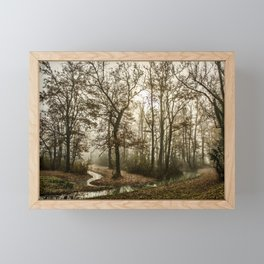 Trees Forest Fog Foggy Foggy Morning Stream Haze Framed Mini Art Print