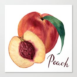 Watercolor sweet peaches Canvas Print