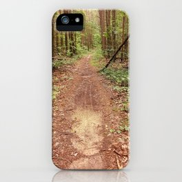 On the Appalachian Forest Trail iPhone Case