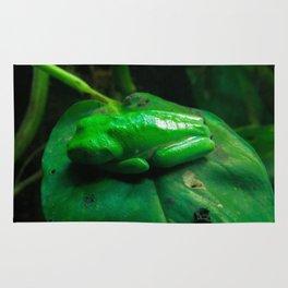 Soo Frog Rug