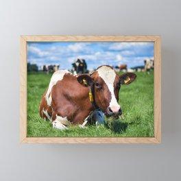 Dutch cow grazing on a green meadow | Summer landscape Photography | Framed Mini Art Print