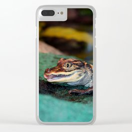 Baby Alligator Eating Clear iPhone Case