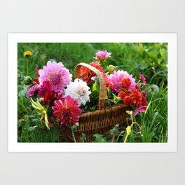 Basket of Dahlias Art Print