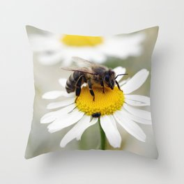 Biene auf der Kamille Wiese Throw Pillow