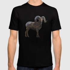 The Rocky Mountain Bighorn Sheep MEDIUM Black Mens Fitted Tee