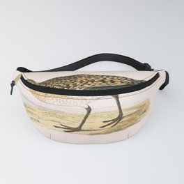 ASIATIC GOLDED PLOVER Fanny Pack