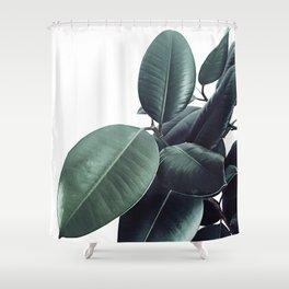 Ficus Elastica #13 #decor #art #society6 Shower Curtain